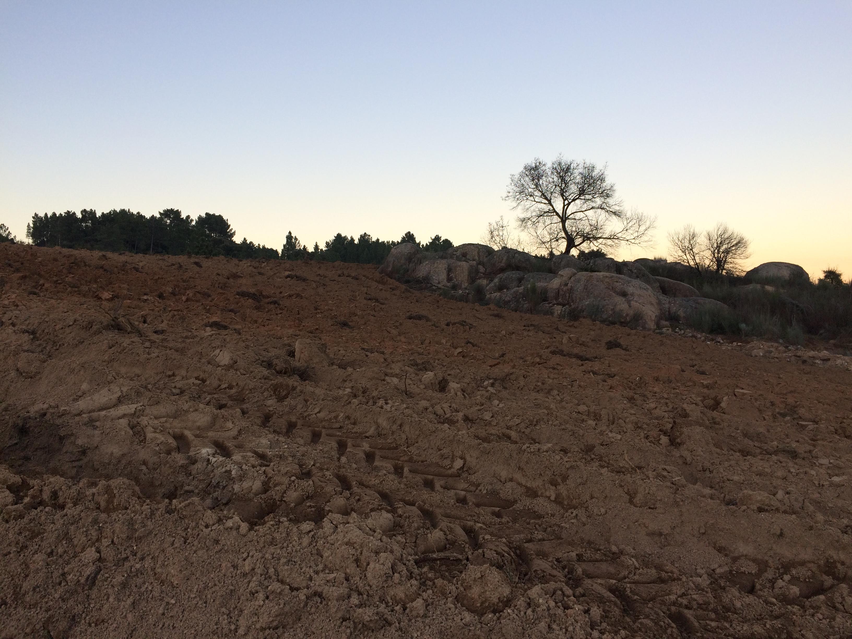 Tierras aradas en Montemiau Dic 2016 (5)